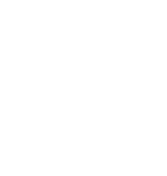 VX -Logo-Vector-White.png